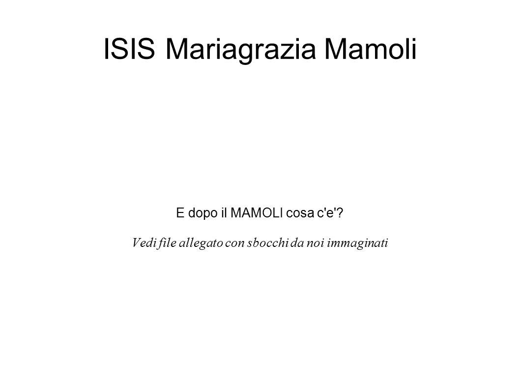 ISIS Mariagrazia Mamoli E dopo il MAMOLI cosa c'e'? Vedi file allegato con sbocchi da noi immaginati