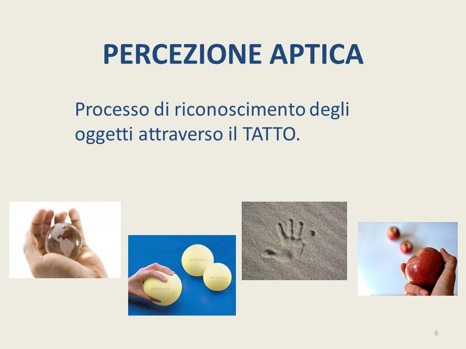 PERCEZIONE APTICA Processo di riconoscimento degli oggetti attraverso il TATTO. 6