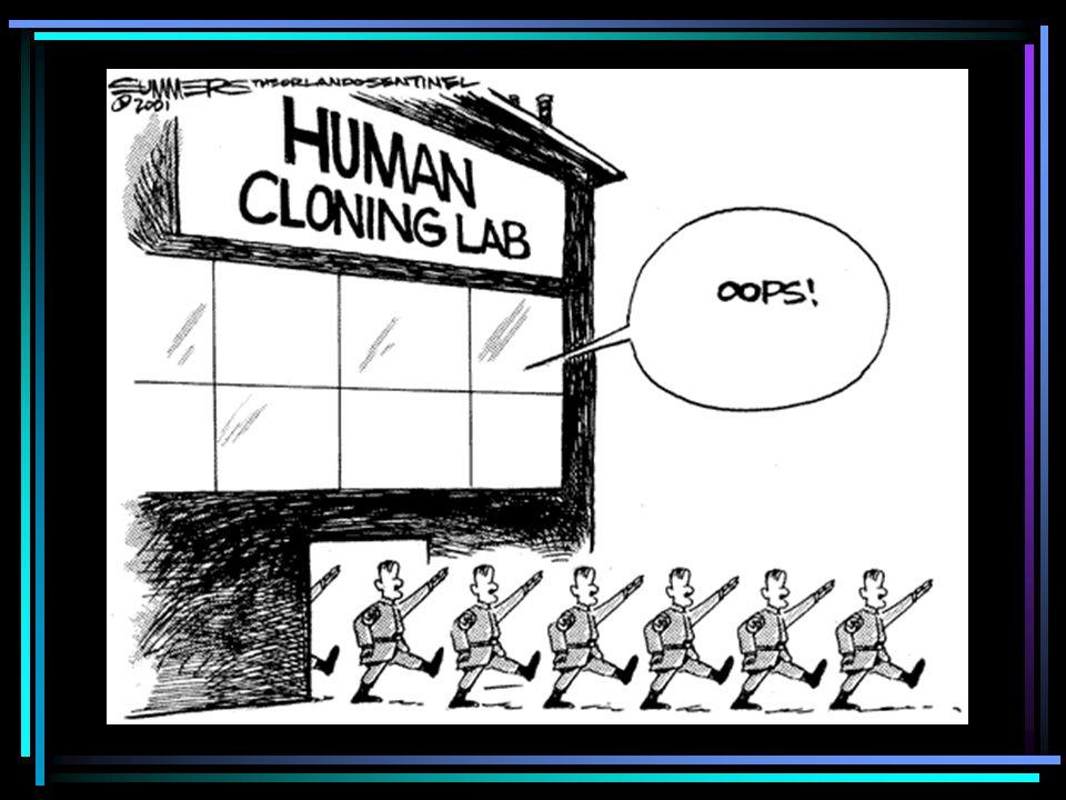 Chi ha voglia di clonare un uomo? …e soprattutto: a cosa serve?