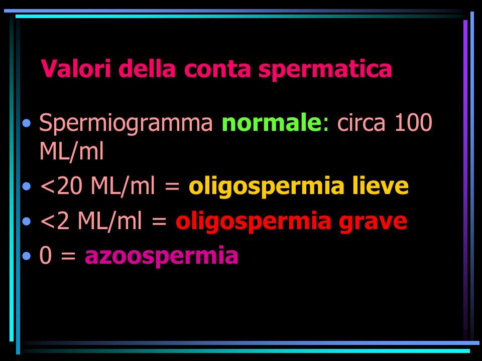 Valori della conta spermatica Spermiogramma normale: circa 100 ML/ml <20 ML/ml = oligospermia lieve <2 ML/ml = oligospermia grave 0 = azoospermia