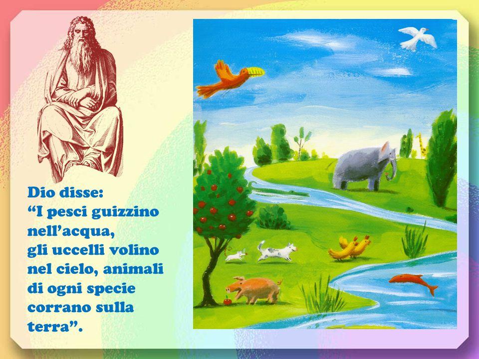 Dio disse: I pesci guizzino nell'acqua, gli uccelli volino nel cielo, animali di ogni specie corrano sulla terra .