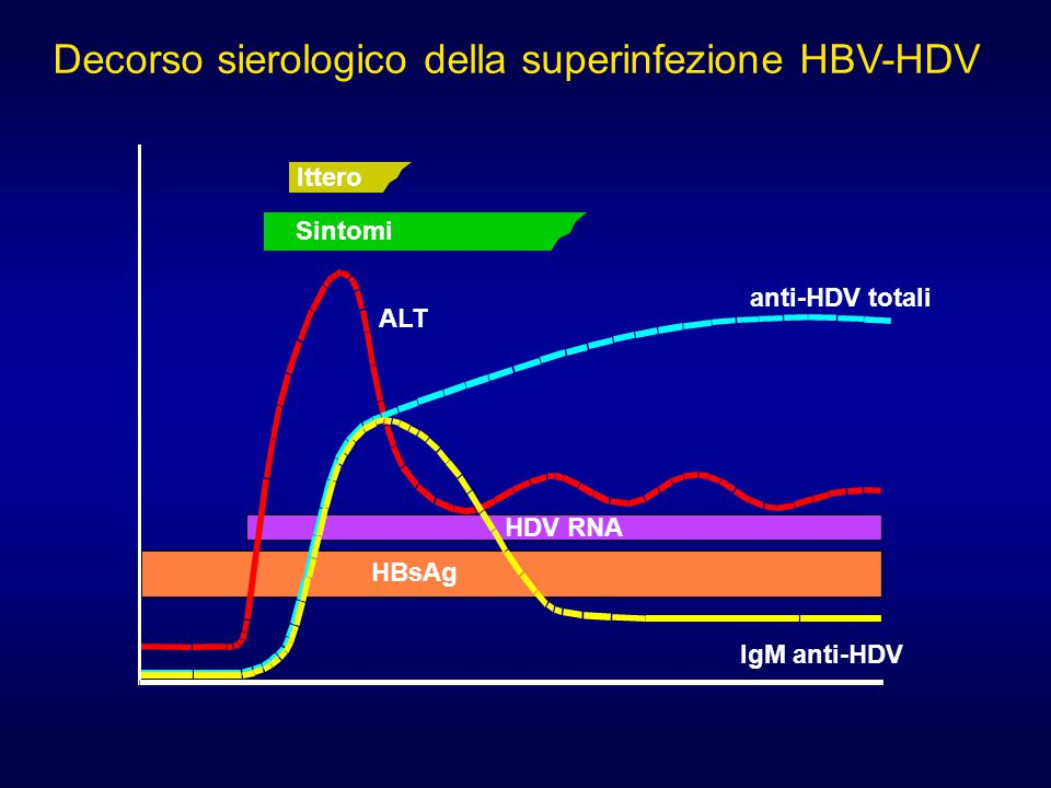 Ittero Sintomi ALT anti-HDV totali IgM anti-HDV HDV RNA HBsAg Decorso sierologico della superinfezione HBV-HDV