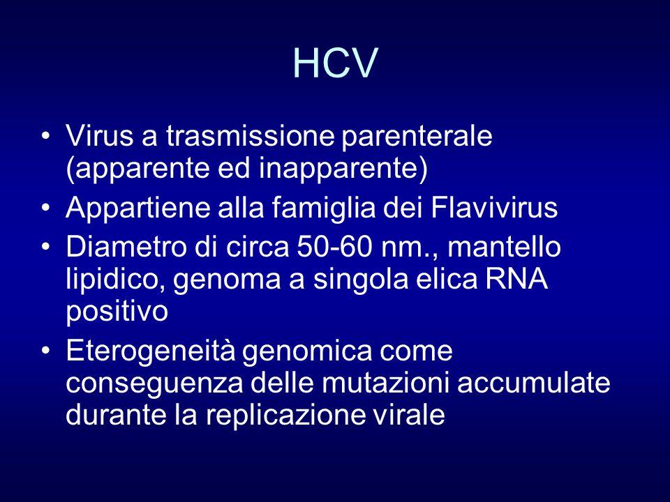 HCV Virus a trasmissione parenterale (apparente ed inapparente) Appartiene alla famiglia dei Flavivirus Diametro di circa 50-60 nm., mantello lipidico, genoma a singola elica RNA positivo Eterogeneità genomica come conseguenza delle mutazioni accumulate durante la replicazione virale