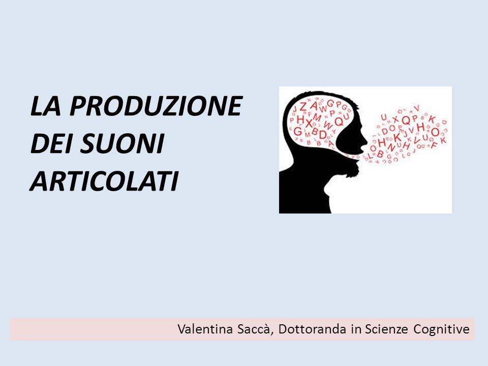 LA PRODUZIONE DEI SUONI ARTICOLATI Valentina Saccà, Dottoranda in Scienze Cognitive