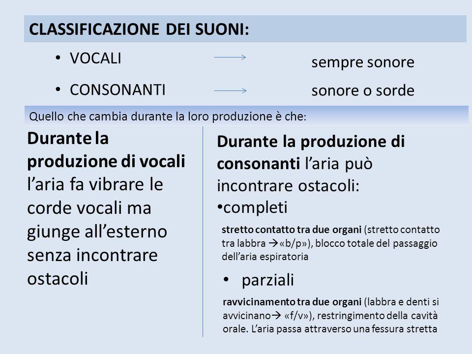 Durante la produzione di consonanti l'aria può incontrare ostacoli: completi CLASSIFICAZIONE DEI SUONI: VOCALI sempre sonore CONSONANTI sonore o sorde