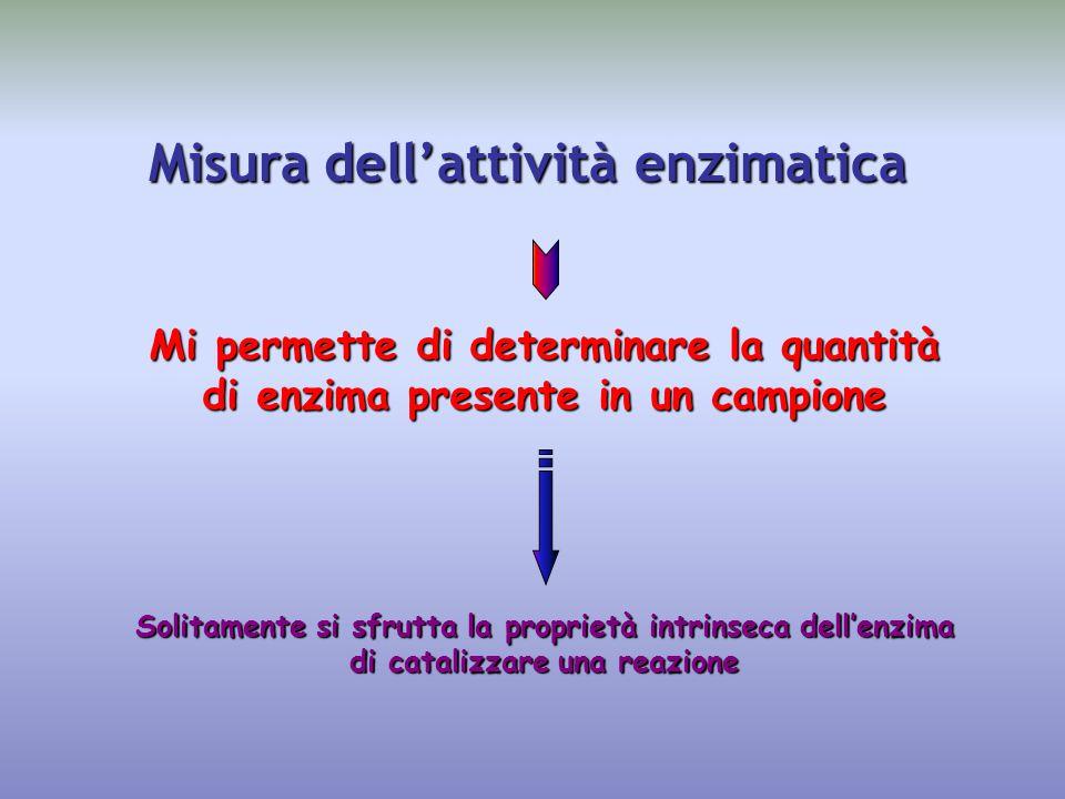 Misura dell'attività enzimatica Mi permette di determinare la quantità di enzima presente in un campione Solitamente si sfrutta la proprietà intrinseca dell'enzima di catalizzare una reazione