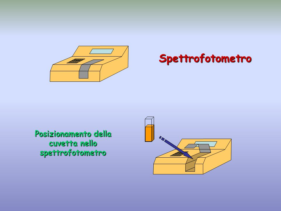 Spettrofotometro Posizionamento della cuvetta nello spettrofotometro
