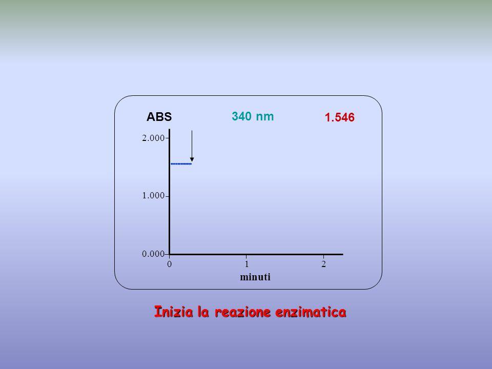 1.546 minuti ABS 340 nm 0.000 1.000 2.000 1 2 0  Inizia la reazione enzimatica