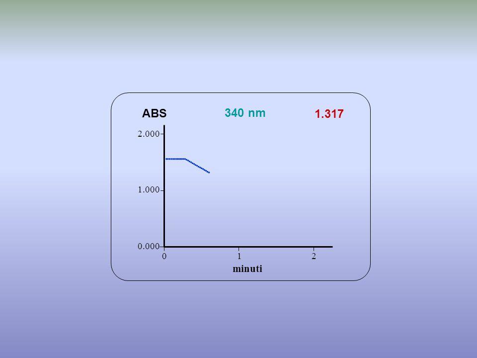 1.317 minuti ABS 340 nm 0.000 1.000 2.000 1 2 0                 