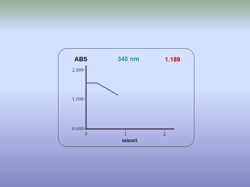 1.189 minuti ABS 340 nm 0.000 1.000 2.000 1 2 0                           
