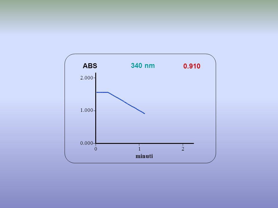 0.910 minuti ABS 340 nm 0.000 1.000 2.000 1 2 0                                           