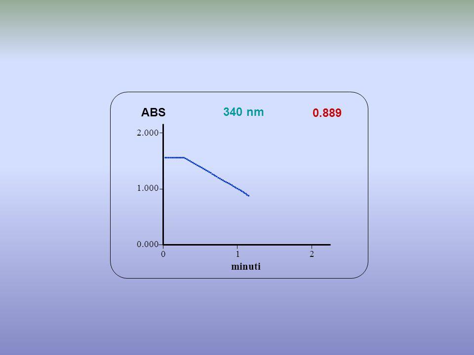 0.889 minuti ABS 340 nm 0.000 1.000 2.000 1 2 0                                             