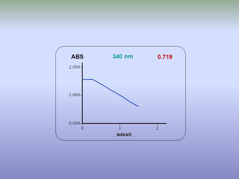 0.719 minuti ABS 340 nm 0.000 1.000 2.000 1 2 0                                             