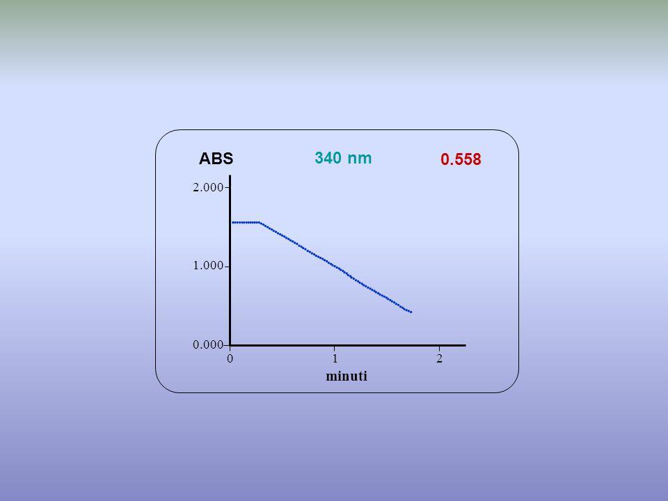 0.558 minuti ABS 340 nm 0.000 1.000 2.000 1 2 0                                             