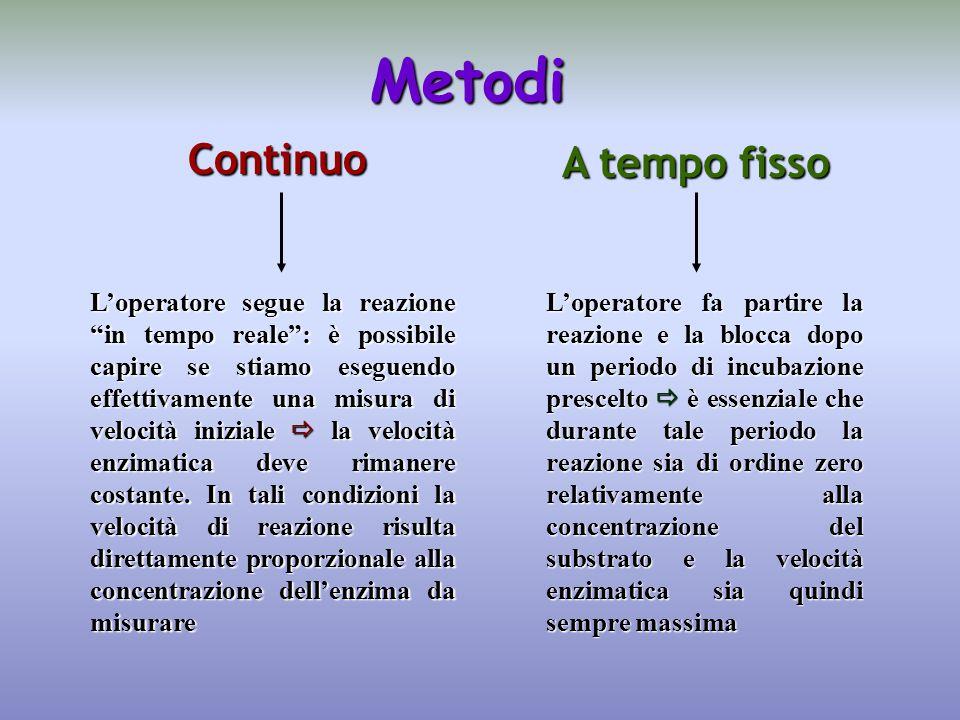 Metodi Continuo A tempo fisso L'operatore segue la reazione in tempo reale : è possibile capire se stiamo eseguendo effettivamente una misura di velocità iniziale  la velocità enzimatica deve rimanere costante.