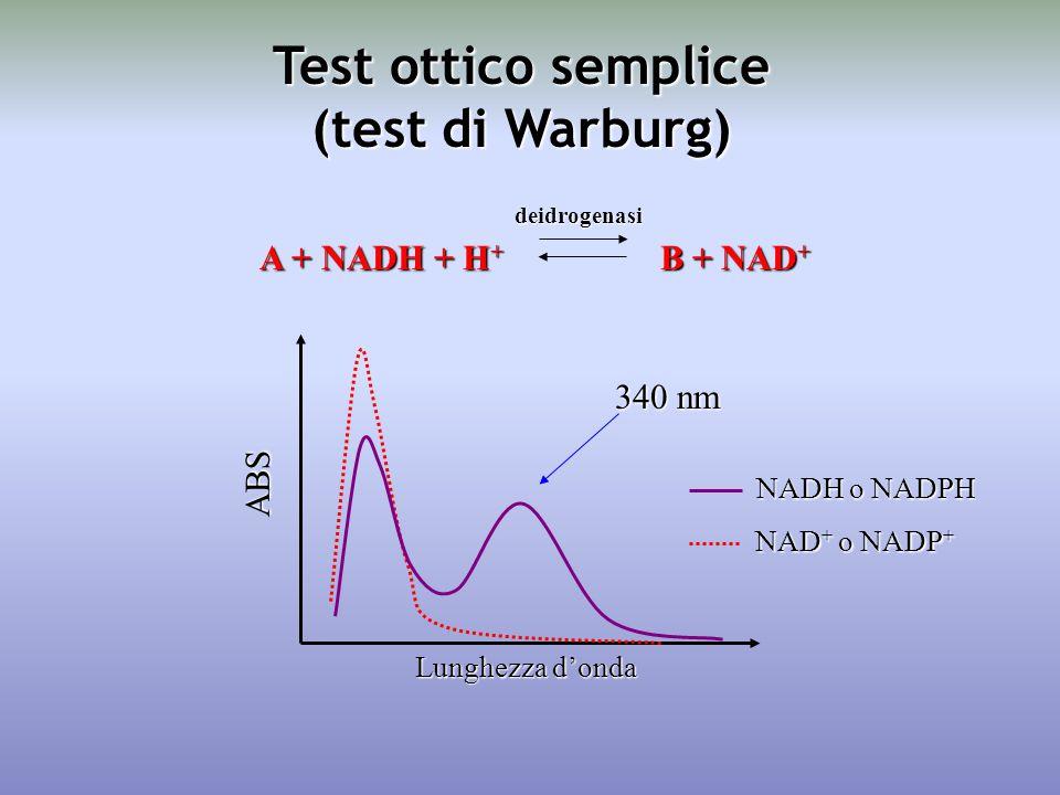 A + NADH + H + B + NAD + ABS Lunghezza d'onda 340 nm NADH o NADPH NAD + o NADP + deidrogenasi Test ottico semplice (test di Warburg)