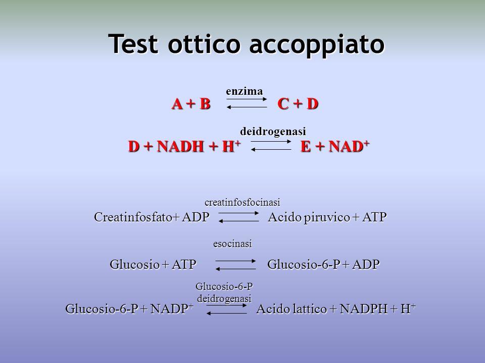 Test ottico accoppiato D + NADH + H + E + NAD + deidrogenasi A + B C + D enzima Creatinfosfato+ ADP Acido piruvico + ATP creatinfosfocinasi Glucosio + ATP Glucosio-6-P + ADP esocinasi Glucosio-6-P + NADP + Acido lattico + NADPH + H + Glucosio-6-Pdeidrogenasi