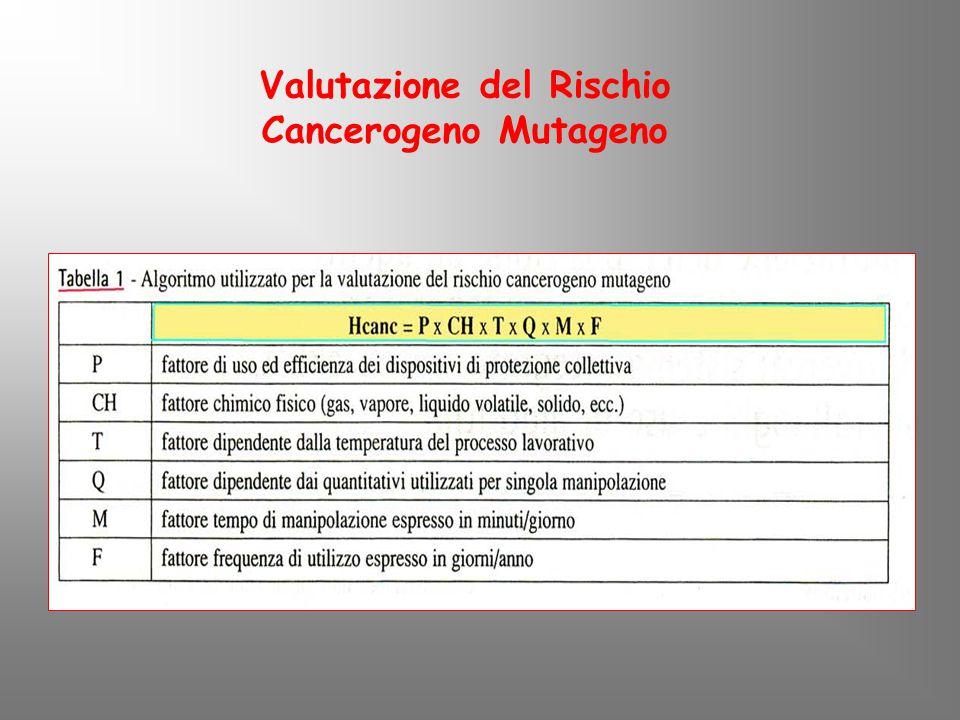 Valutazione del Rischio Cancerogeno Mutageno