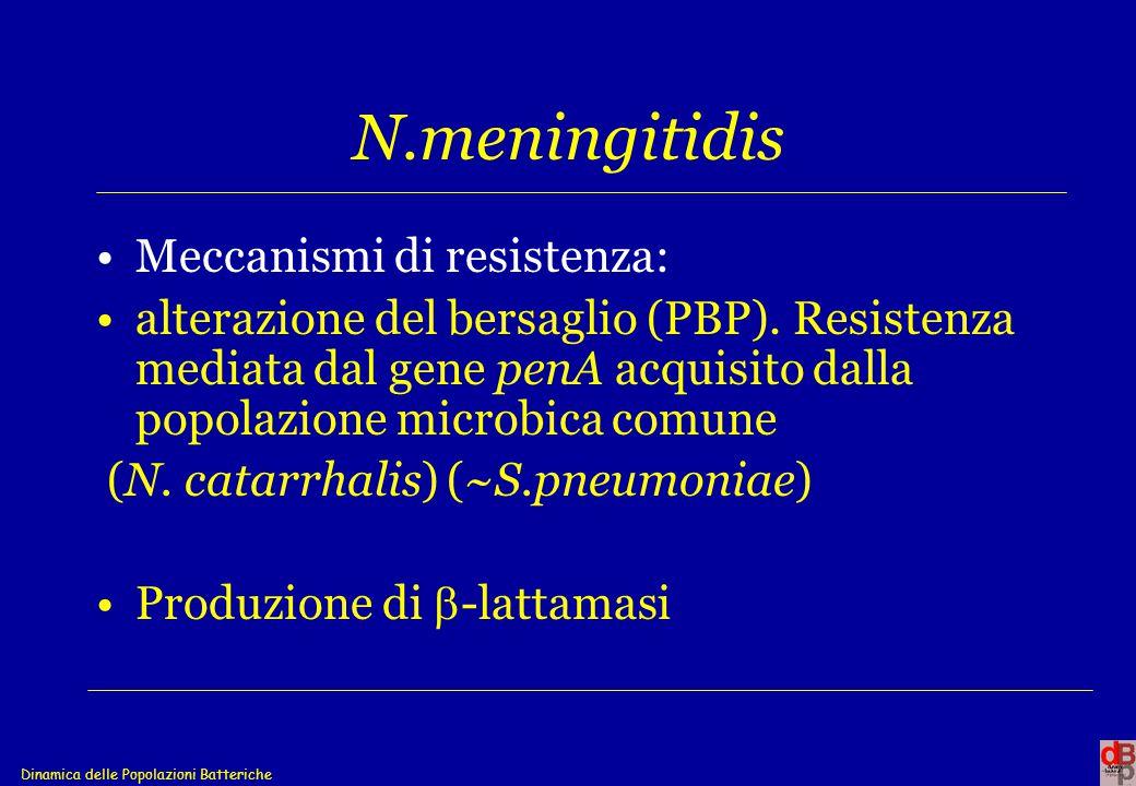 Dinamica delle Popolazioni Batteriche N.meningitidis Meccanismi di resistenza: alterazione del bersaglio (PBP). Resistenza mediata dal gene penA acqui