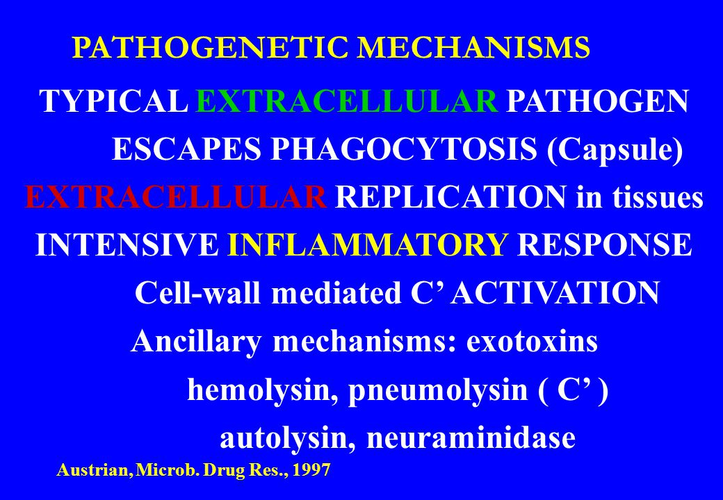 PATHOGENETIC MECHANISMS TYPICAL EXTRACELLULAR PATHOGEN ESCAPES PHAGOCYTOSIS (Capsule) EXTRACELLULAR REPLICATION in tissues INTENSIVE INFLAMMATORY RESP