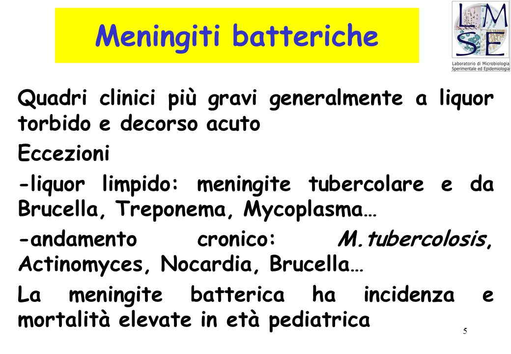 5 Meningiti batteriche Quadri clinici più gravi generalmente a liquor torbido e decorso acuto Eccezioni -liquor limpido: meningite tubercolare e da Br