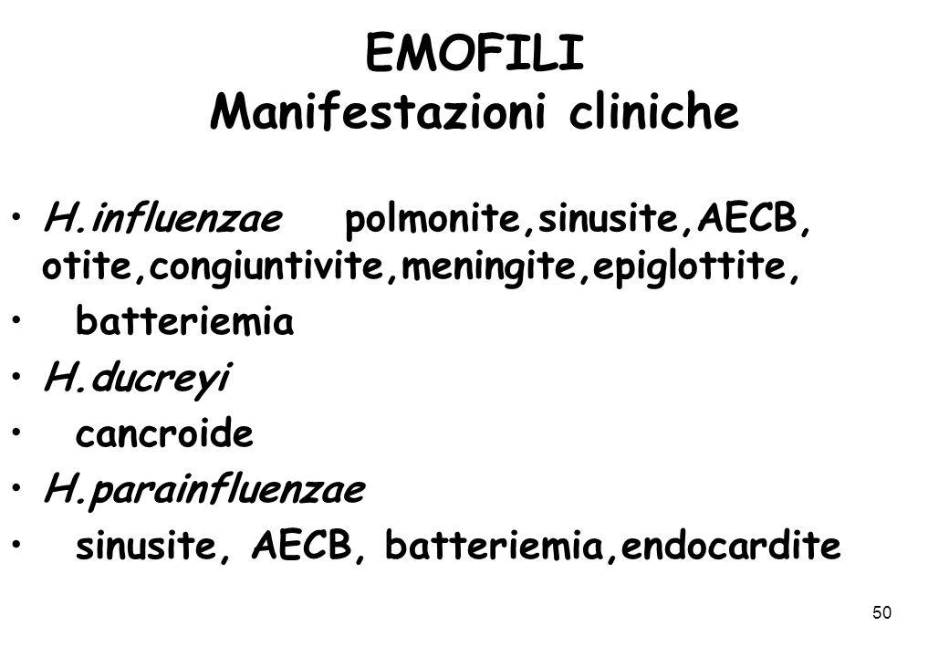 50 EMOFILI Manifestazioni cliniche H.influenzae polmonite,sinusite,AECB, otite,congiuntivite,meningite,epiglottite, batteriemia H.ducreyi cancroide H.