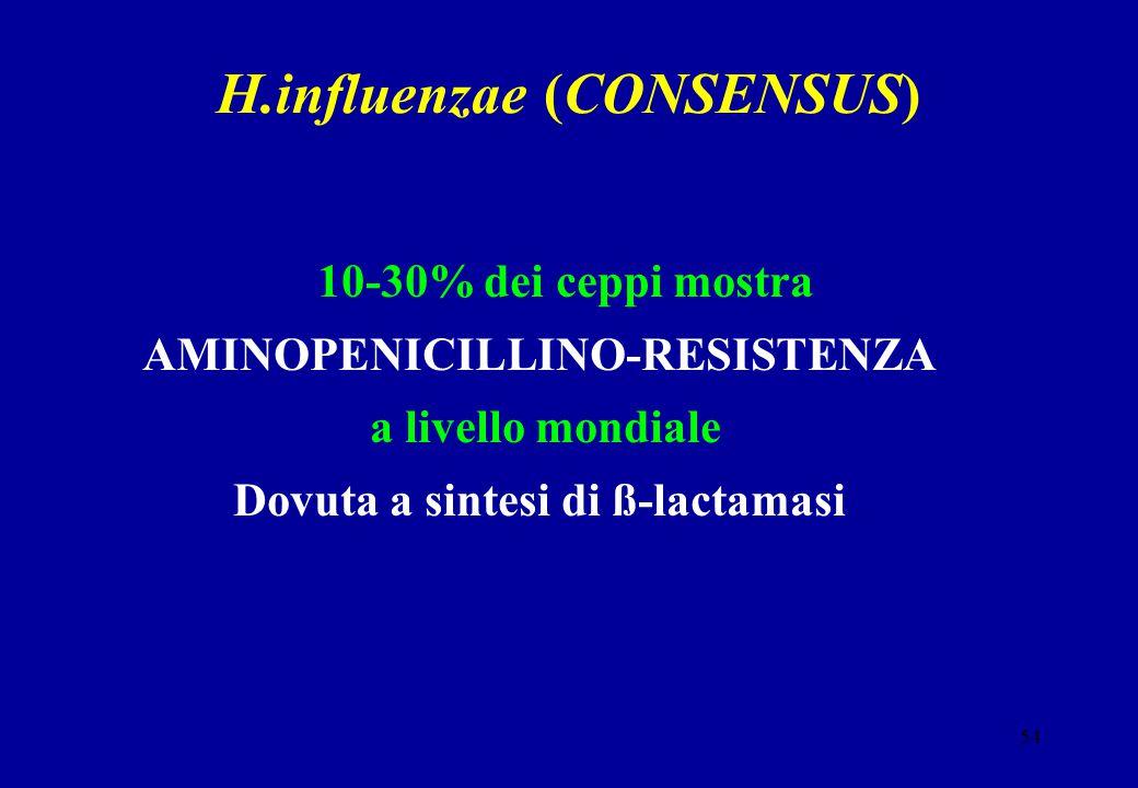 54 H.influenzae (CONSENSUS) 10-30% dei ceppi mostra AMINOPENICILLINO-RESISTENZA a livello mondiale Dovuta a sintesi di ß-lactamasi