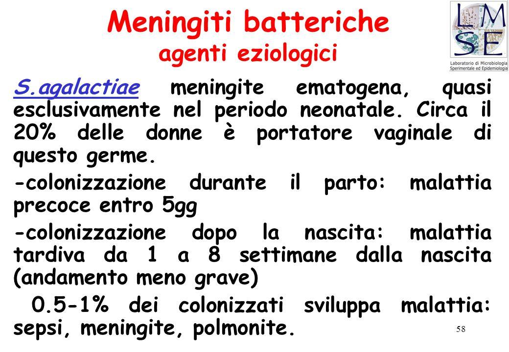 58 Meningiti batteriche agenti eziologici S.agalactiae meningite ematogena, quasi esclusivamente nel periodo neonatale. Circa il 20% delle donne è por