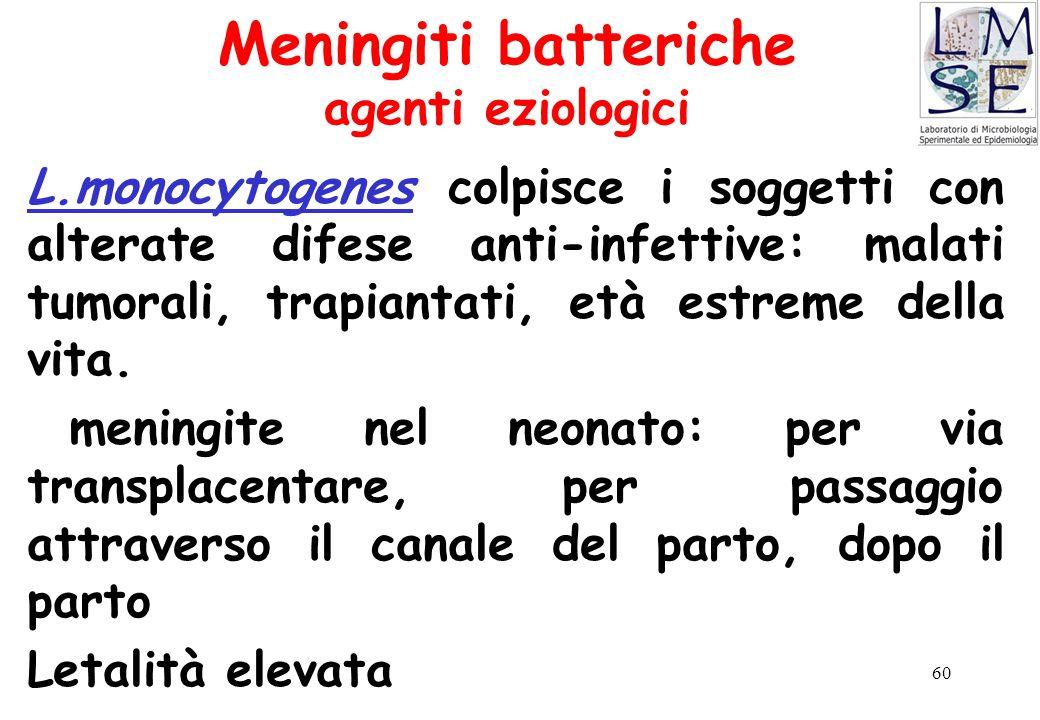 60 Meningiti batteriche agenti eziologici L.monocytogenes colpisce i soggetti con alterate difese anti-infettive: malati tumorali, trapiantati, età es