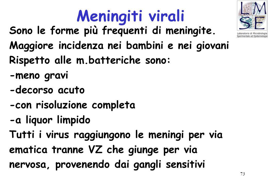 73 Meningiti virali Sono le forme più frequenti di meningite. Maggiore incidenza nei bambini e nei giovani Rispetto alle m.batteriche sono: -meno grav