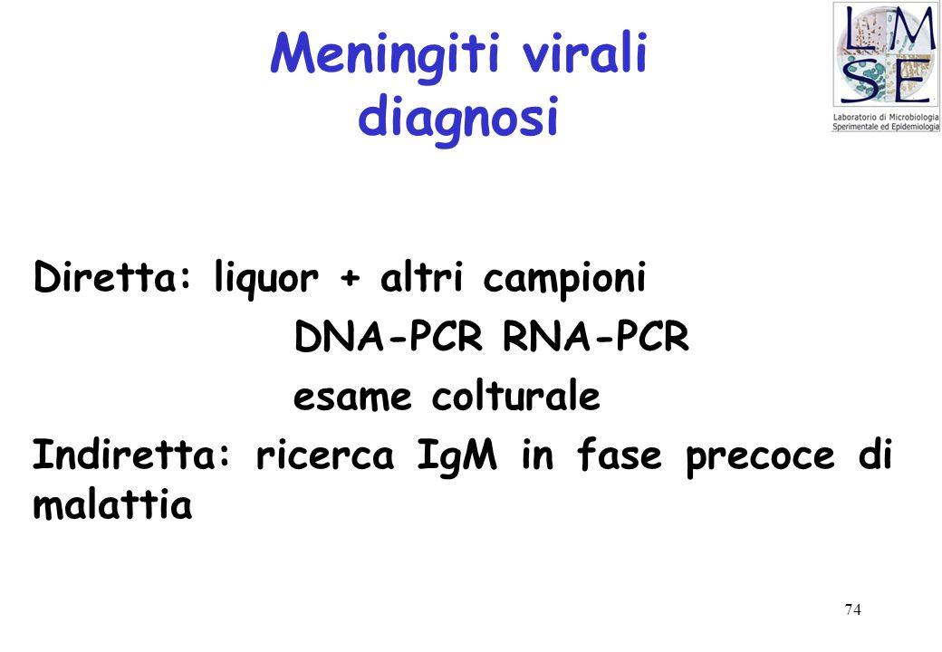 74 Meningiti virali diagnosi Diretta: liquor + altri campioni DNA-PCR RNA-PCR esame colturale Indiretta: ricerca IgM in fase precoce di malattia