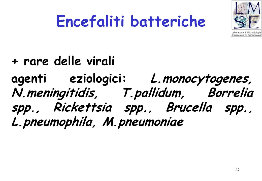 75 Encefaliti batteriche + rare delle virali agenti eziologici: L.monocytogenes, N.meningitidis, T.pallidum, Borrelia spp., Rickettsia spp., Brucella