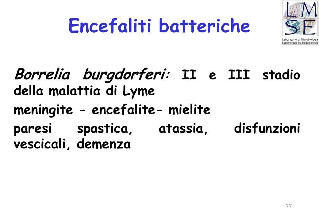 77 Encefaliti batteriche Borrelia burgdorferi : II e III stadio della malattia di Lyme meningite - encefalite- mielite paresi spastica, atassia, disfu