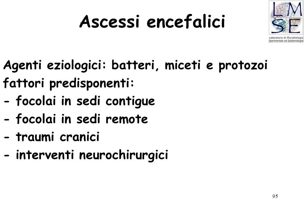 95 Ascessi encefalici Agenti eziologici: batteri, miceti e protozoi fattori predisponenti: - focolai in sedi contigue - focolai in sedi remote - traum