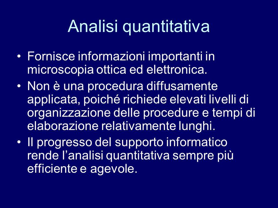 Analisi quantitativa Fornisce informazioni importanti in microscopia ottica ed elettronica. Non è una procedura diffusamente applicata, poiché richied