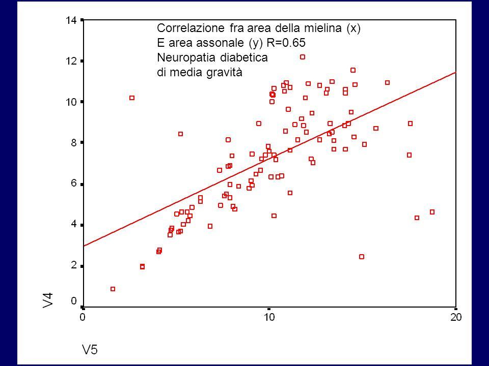 Correlazione fra area della mielina (x) E area assonale (y) R=0.65 Neuropatia diabetica di media gravità