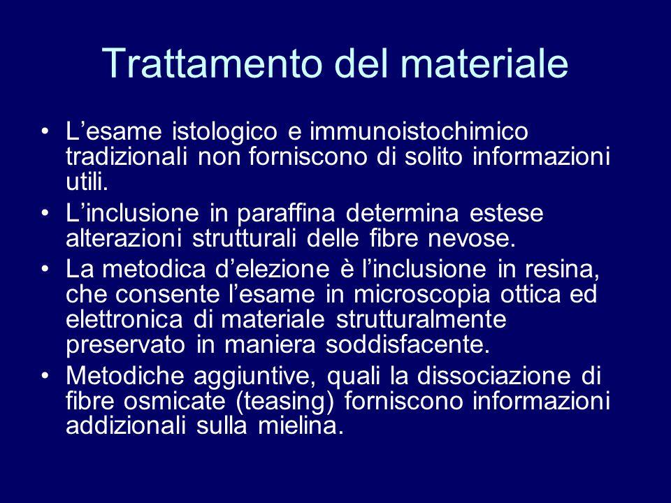 Trattamento del materiale L'esame istologico e immunoistochimico tradizionali non forniscono di solito informazioni utili. L'inclusione in paraffina d