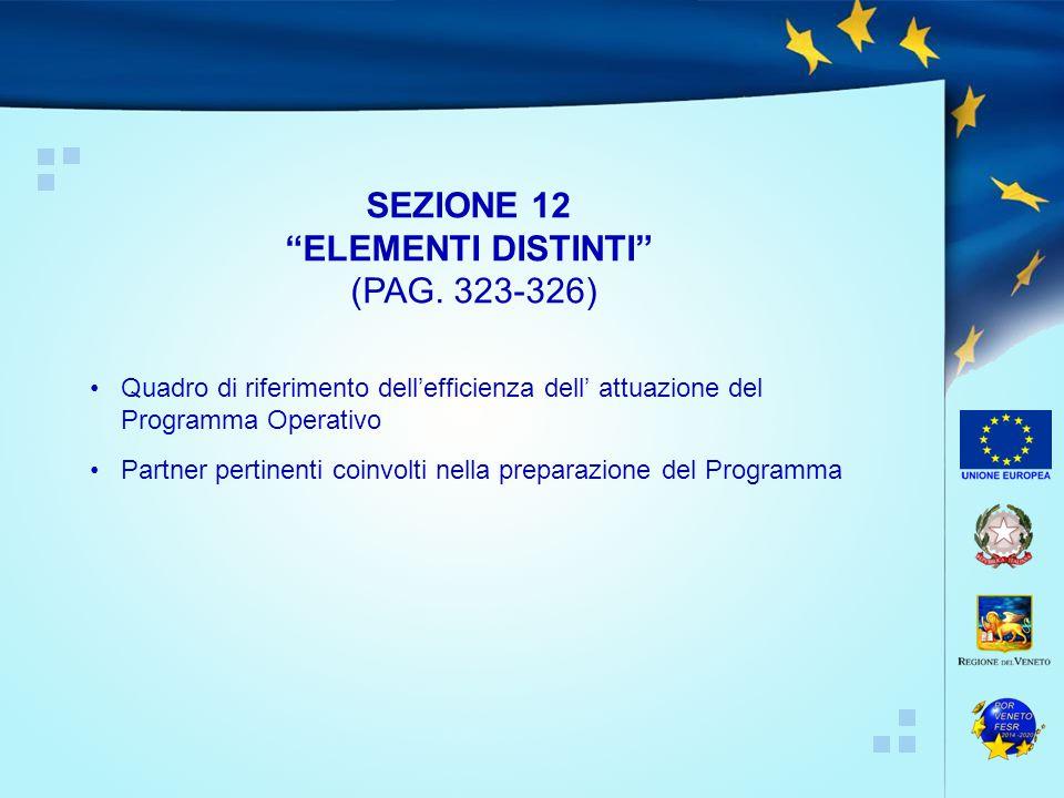 Quadro di riferimento dell'efficienza dell' attuazione del Programma Operativo Partner pertinenti coinvolti nella preparazione del Programma SEZIONE 12 ELEMENTI DISTINTI (PAG.
