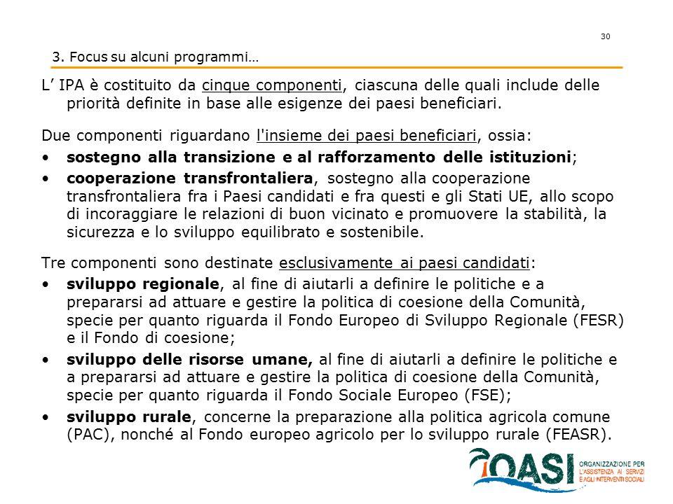 L' IPA è costituito da cinque componenti, ciascuna delle quali include delle priorità definite in base alle esigenze dei paesi beneficiari. Due compon