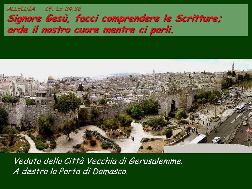 Veduta della Città Vecchia di Gerusalemme.A destra la Porta di Damasco.