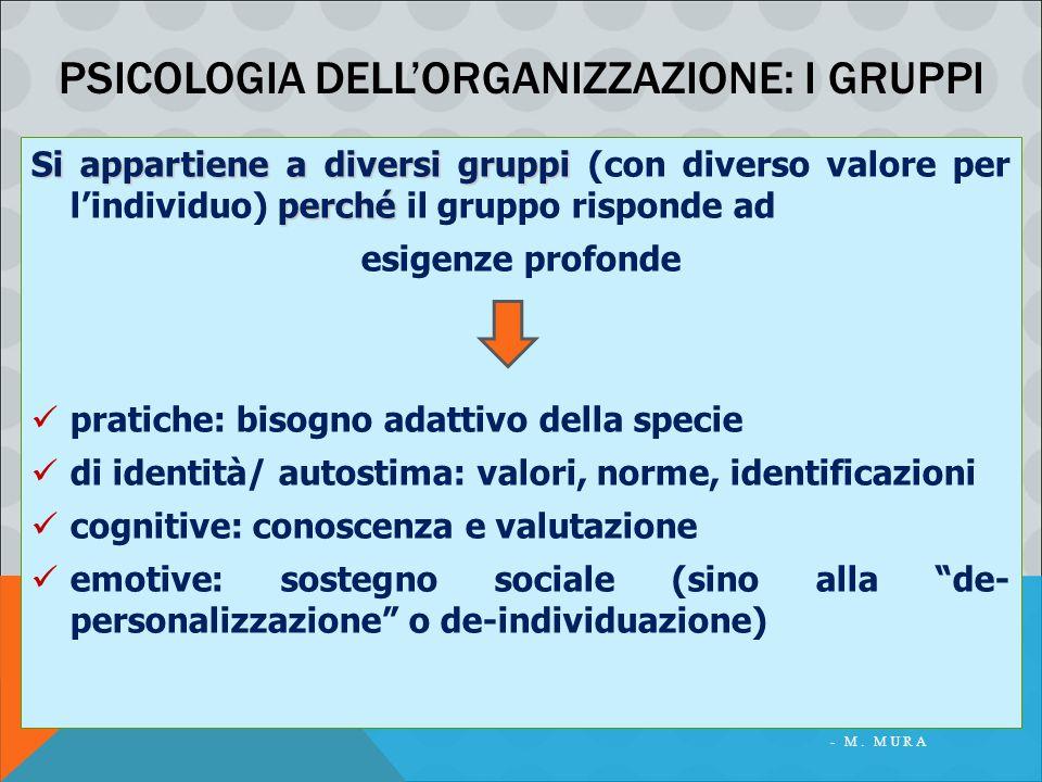 PSICOLOGIA DELLA COMUNICAZIONE ORGANIZZATIVA - M. MURA PSICOLOGIA DELL'ORGANIZZAZIONE: I GRUPPI Si appartiene a diversi gruppi perché Si appartiene a