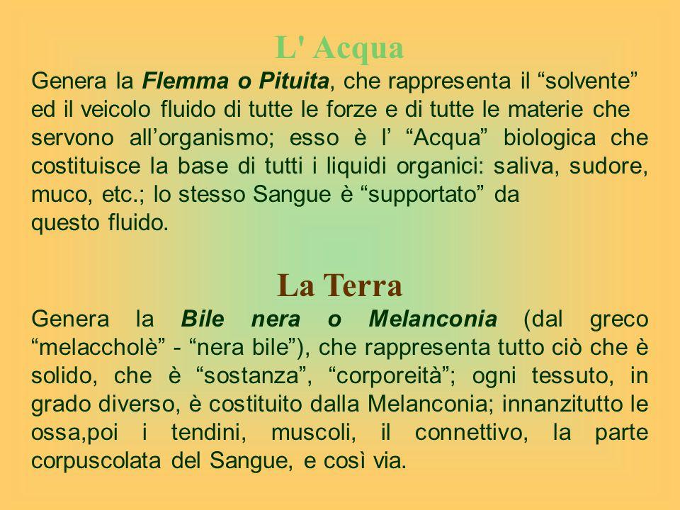 L Acqua Genera la Flemma o Pituita, che rappresenta il solvente ed il veicolo fluido di tutte le forze e di tutte le materie che servono all'organismo; esso è l' Acqua biologica che costituisce la base di tutti i liquidi organici: saliva, sudore, muco, etc.; lo stesso Sangue è supportato da questo fluido.