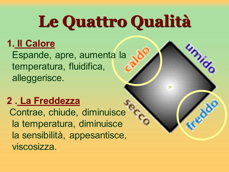 Le Quattro Qualità 1.Il Calore Espande, apre, aumenta la temperatura, fluidifica, alleggerisce.