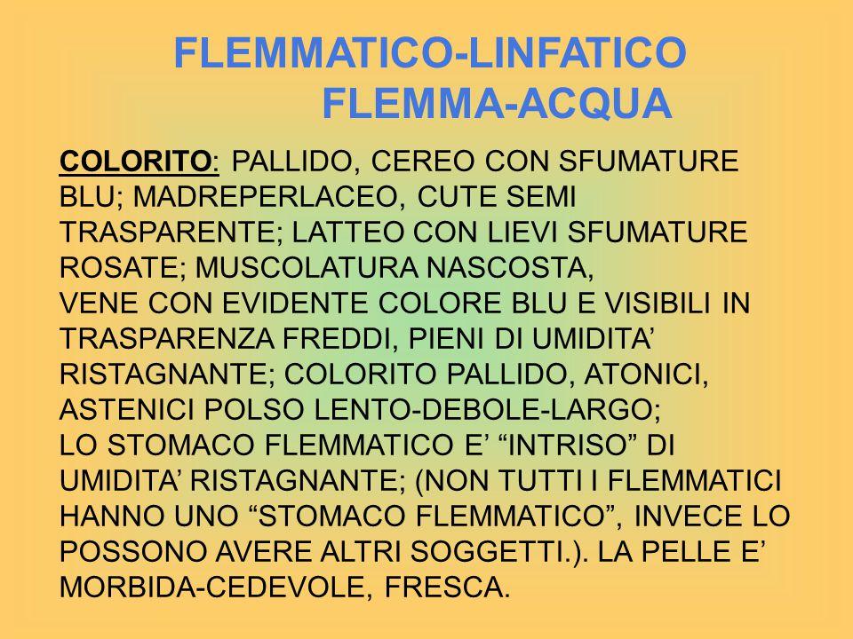 FLEMMATICO-LINFATICO FLEMMA-ACQUA COLORITO: PALLIDO, CEREO CON SFUMATURE BLU; MADREPERLACEO, CUTE SEMI TRASPARENTE; LATTEO CON LIEVI SFUMATURE ROSATE; MUSCOLATURA NASCOSTA, VENE CON EVIDENTE COLORE BLU E VISIBILI IN TRASPARENZA FREDDI, PIENI DI UMIDITA' RISTAGNANTE; COLORITO PALLIDO, ATONICI, ASTENICI POLSO LENTO-DEBOLE-LARGO; LO STOMACO FLEMMATICO E' INTRISO DI UMIDITA' RISTAGNANTE; (NON TUTTI I FLEMMATICI HANNO UNO STOMACO FLEMMATICO , INVECE LO POSSONO AVERE ALTRI SOGGETTI.).
