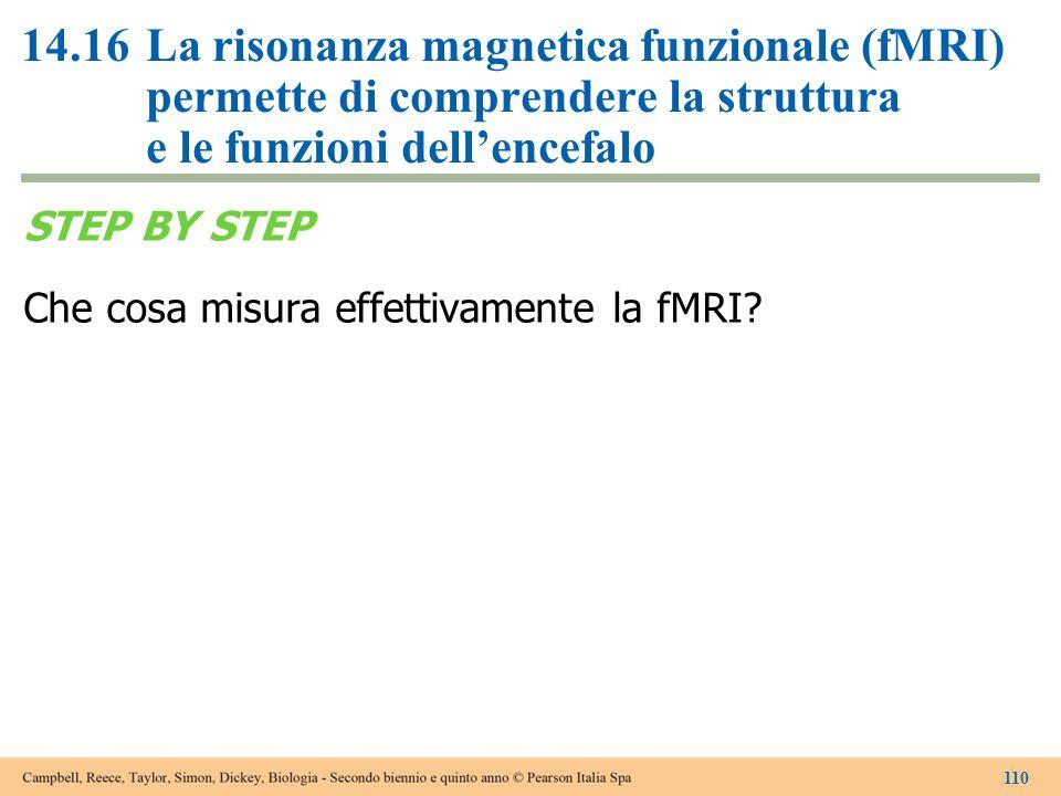 14.16La risonanza magnetica funzionale (fMRI) permette di comprendere la struttura e le funzioni dell'encefalo STEP BY STEP Che cosa misura effettivam