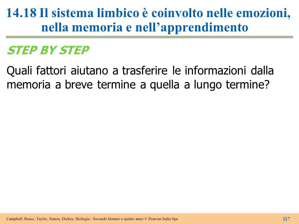 14.18 Il sistema limbico è coinvolto nelle emozioni, nella memoria e nell'apprendimento STEP BY STEP Quali fattori aiutano a trasferire le informazion