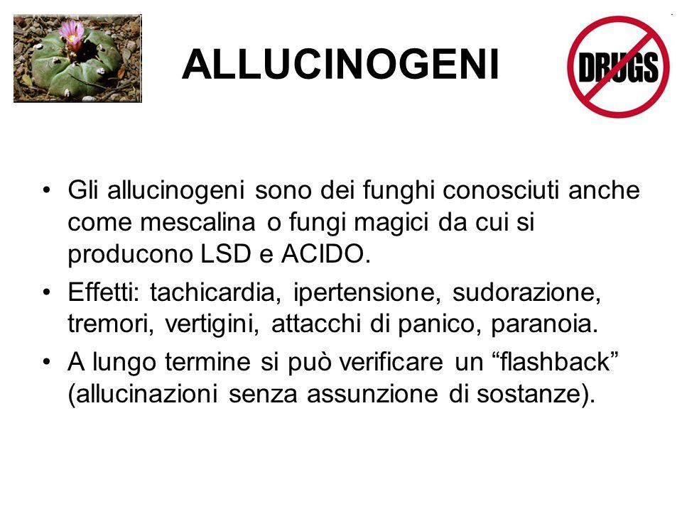 ALLUCINOGENI Gli allucinogeni sono dei funghi conosciuti anche come mescalina o fungi magici da cui si producono LSD e ACIDO. Effetti: tachicardia, ip