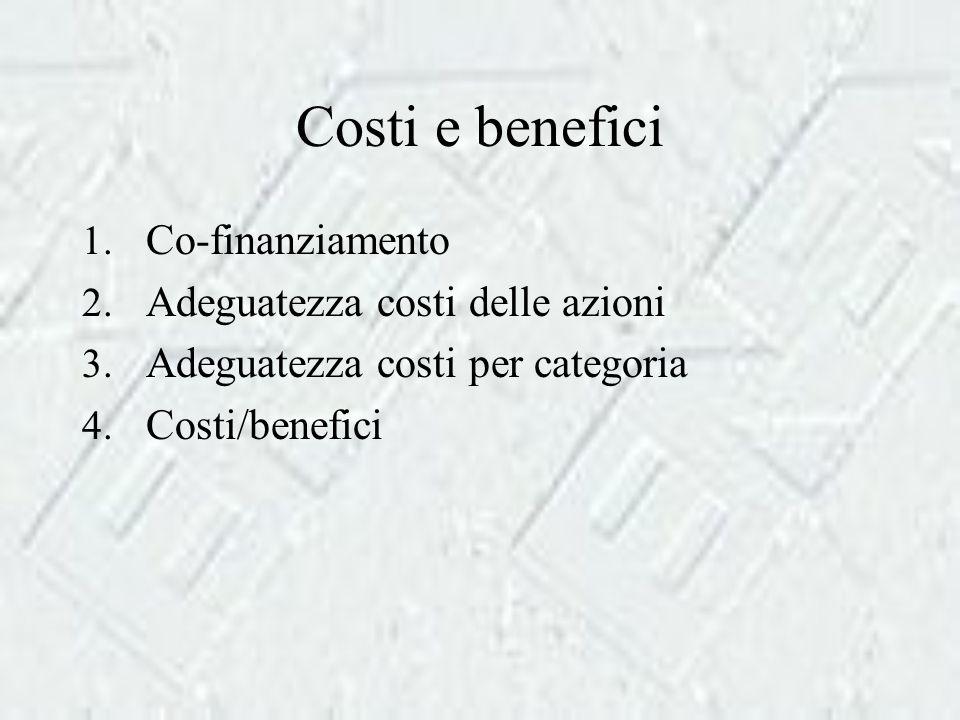 Costi e benefici 1. Co-finanziamento 2. Adeguatezza costi delle azioni 3.