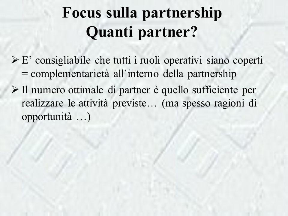 Focus sulla partnership Quanti partner.