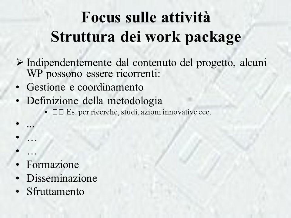 Focus sulle attività Struttura dei work package  Indipendentemente dal contenuto del progetto, alcuni WP possono essere ricorrenti: Gestione e coordinamento Definizione della metodologia Es.